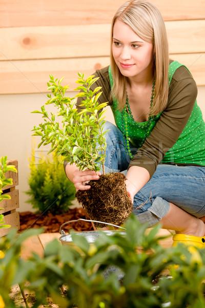Tuinieren vrouw terras voorjaar natuur Stockfoto © CandyboxPhoto