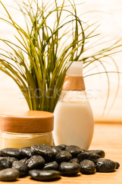 Stock photo: Spa green plant with cosmetic products stones