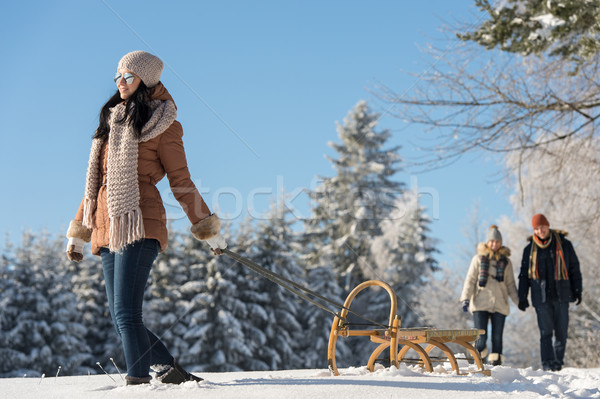 Sunny winter day woman pulling sledge Stock photo © CandyboxPhoto