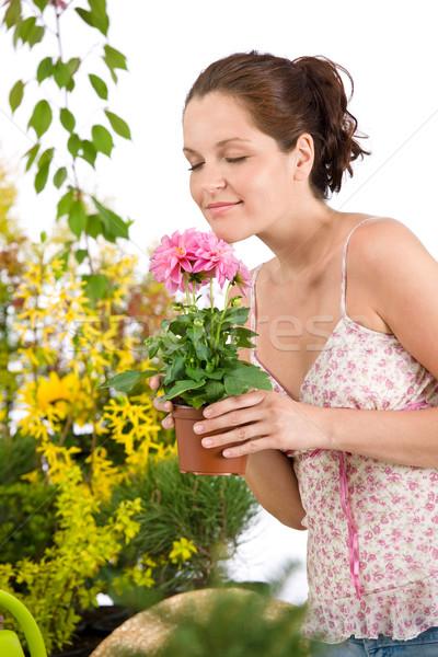 Grădinărit femeie ghiveci de flori floare floare Imagine de stoc © CandyboxPhoto