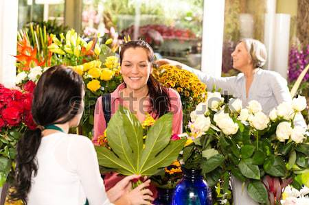 Fiatal virágárus vág virágok bolt vásárlók Stock fotó © CandyboxPhoto