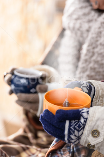 Thé hiver mains campagne Photo stock © CandyboxPhoto