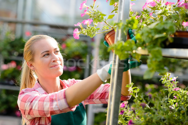 Female garden center worker with potted flowers Stock photo © CandyboxPhoto