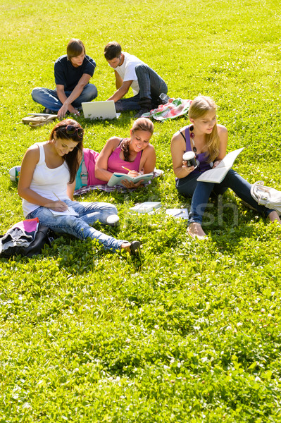 Stock photo: Students studying sitting in the park teens