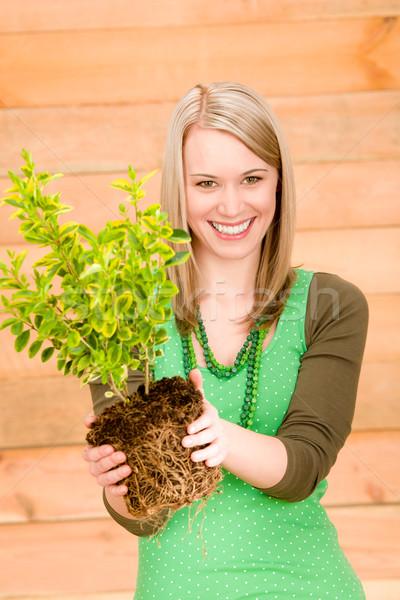 Portret szczęśliwy kobieta utrzymać roślin wiosną Zdjęcia stock © CandyboxPhoto