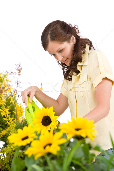 Gardening - Woman pouring sunflowers with watering can Stock photo © CandyboxPhoto