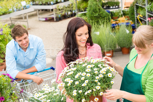 Florist assist woman choose flowers garden store Stock photo © CandyboxPhoto