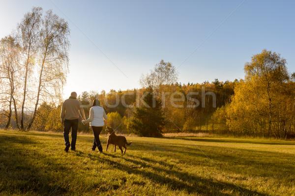Couple walk dog autumn sunset countryside meadow Stock photo © CandyboxPhoto