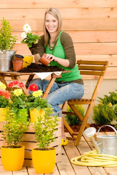 Stock fotó: Kertészkedés · nő · ültet · tavaszi · virág · terasz · virág