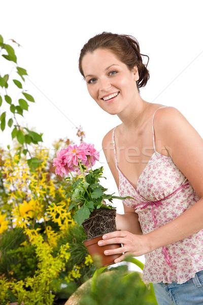 Grădinărit femeie ghiveci de flori femeie zambitoare alb Imagine de stoc © CandyboxPhoto