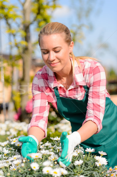 Garden center woman worker caring for flowers Stock photo © CandyboxPhoto