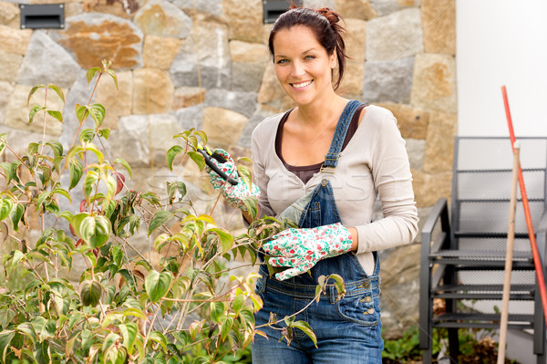 Happy woman clipping bush garden hobby clippers Stock photo © CandyboxPhoto