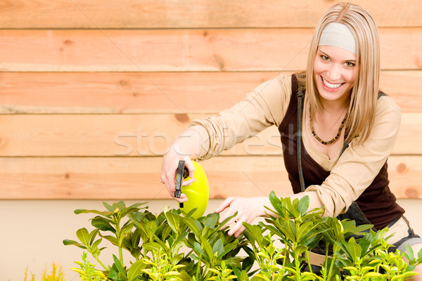 Gardening woman watering plants in spring Stock photo © CandyboxPhoto