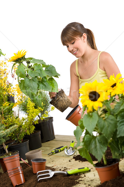 Gardening - smiling woman holding flower pot with sunflower  Stock photo © CandyboxPhoto