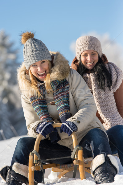 Two female friends sledge downhill in wintertime Stock photo © CandyboxPhoto