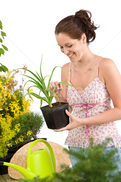 Gardening - woman holding flower pot Stock photo © CandyboxPhoto