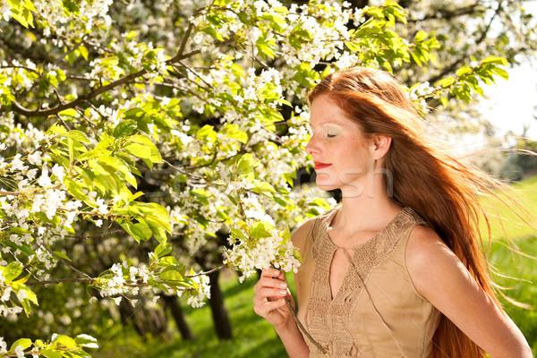Fiatal nő élvezi tavasz virág fa gyönyörű Stock fotó © CandyboxPhoto