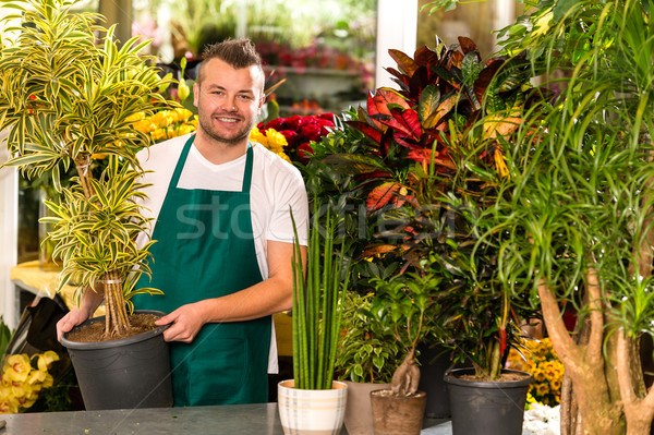 Male shop assistant potted plant flower working Stock photo © CandyboxPhoto