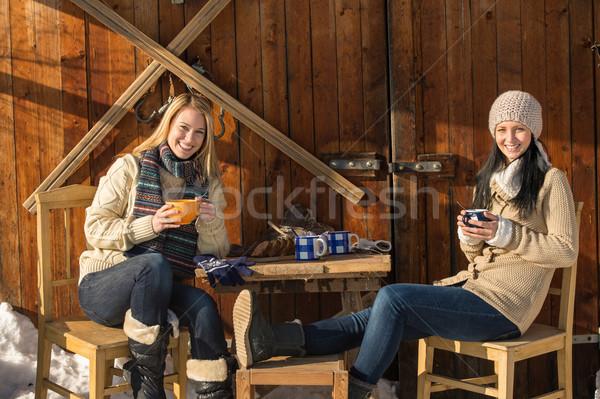 Twee jonge vrouwen genieten thee winter huisje Stockfoto © CandyboxPhoto