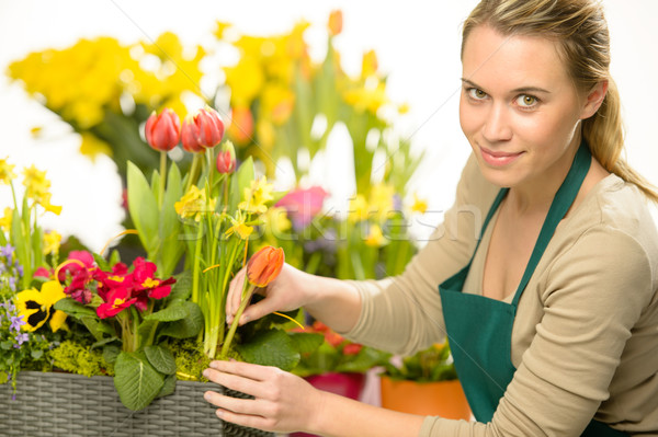 Florist arrange spring flowers colorful plants Stock photo © CandyboxPhoto