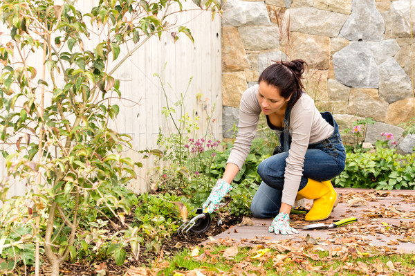 Young woman planting backyard gardening tools flowerbed Stock photo © CandyboxPhoto