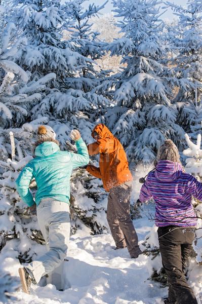Hógolyó verekedés tél barátok szórakozás játszik Stock fotó © CandyboxPhoto