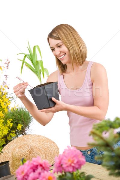 Tuinieren glimlachende vrouw bloempot plant witte Stockfoto © CandyboxPhoto