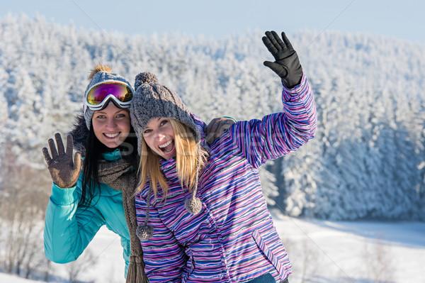 Stok fotoğraf: Iki · kadın · arkadaşlar · kış · kar · dağlar