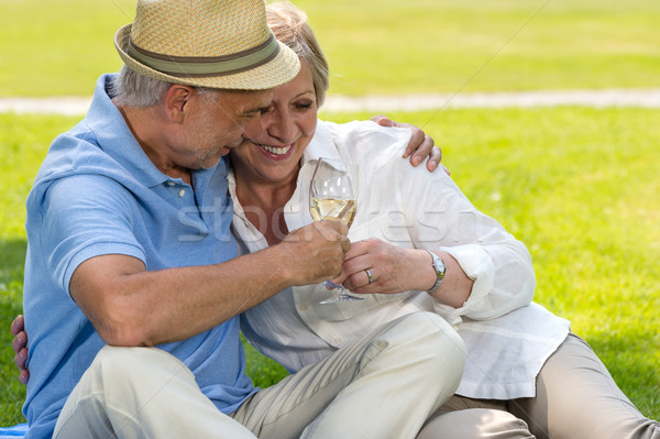 Senior couple clinking glasses on picnic Stock photo © CandyboxPhoto