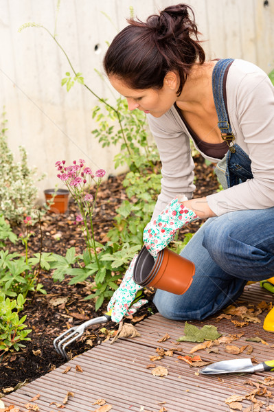 Woman kneeling planting garden hobby rake plants Stock photo © CandyboxPhoto