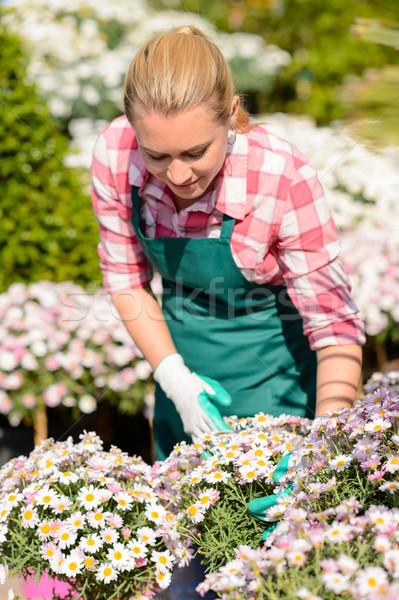 Jardin centre femme vérifier Daisy parterre de fleurs Photo stock © CandyboxPhoto