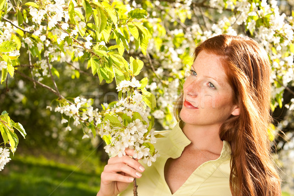 Stockfoto: Jonge · vrouw · genieten · voorjaar · bloesem · boom · jonge