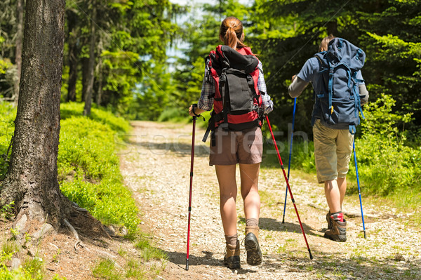 Hikers on path with trekking poles Stock photo © CandyboxPhoto