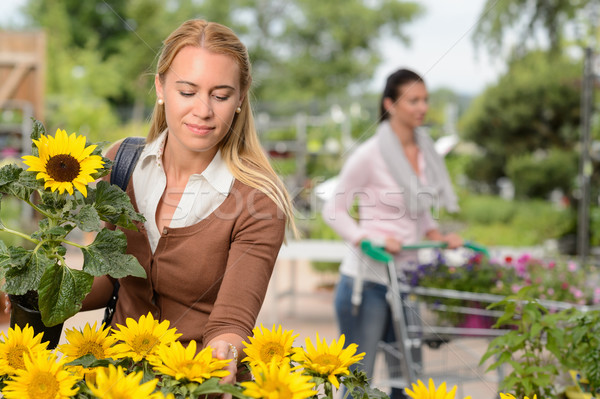 Woman choosing potted sunflower in garden center Stock photo © CandyboxPhoto