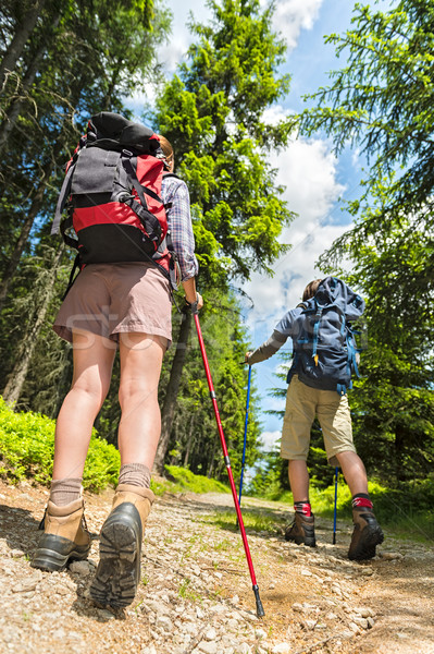 Tourists with trekking poles from behind Stock photo © CandyboxPhoto