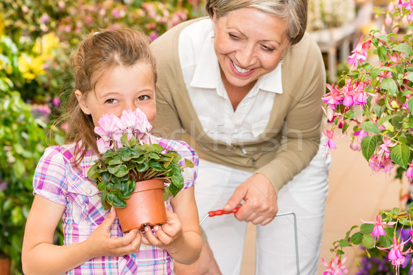Garden shop child with grandmother smell cyclamen Stock photo © CandyboxPhoto