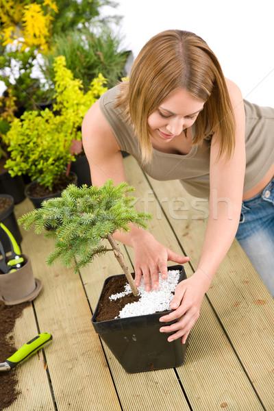 ガーデニング 女性 盆栽 ツリー 植物 ストックフォト © CandyboxPhoto