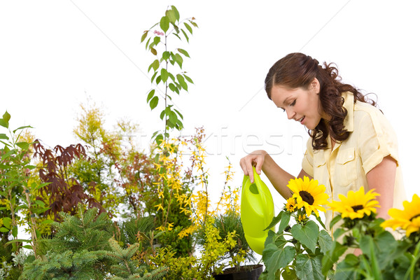 Gardening - Woman pouring plants with watering can Stock photo © CandyboxPhoto