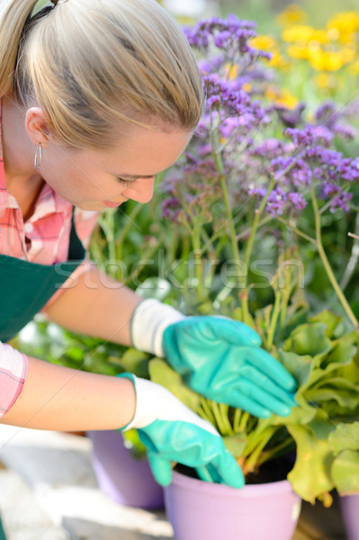 Garden center woman planting purple potted flowers Stock photo © CandyboxPhoto