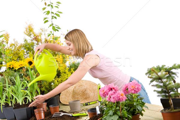 Foto stock: Jardinagem · mulher · água · planta · regador