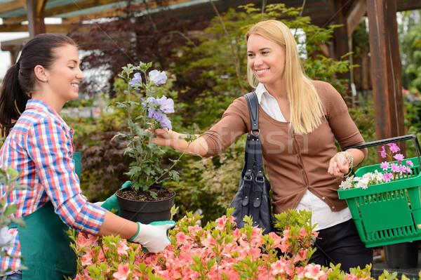 Jardim centro trabalhador flor cliente Foto stock © CandyboxPhoto
