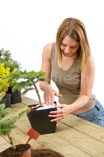 Gardening - woman with bonsai tree and plants Stock photo © CandyboxPhoto