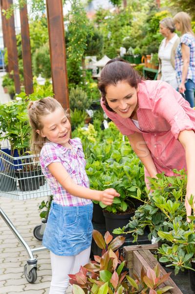 Matka córka kwiaty ogród sklep Zdjęcia stock © CandyboxPhoto