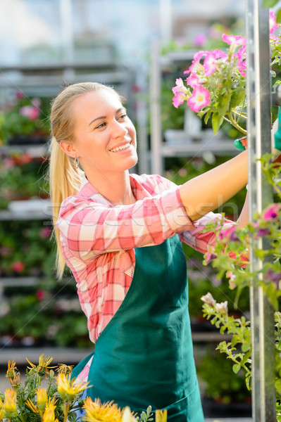Garden center woman work with potted flowers Stock photo © CandyboxPhoto