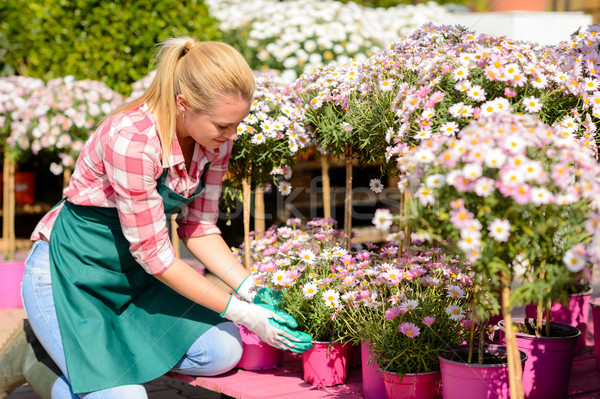 Garden center woman kneeling by potted flowers Stock photo © CandyboxPhoto