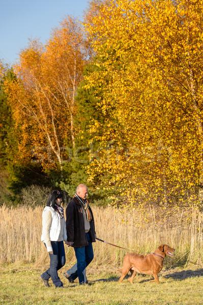 Couple walking dog in sunny autumn countryside Stock photo © CandyboxPhoto