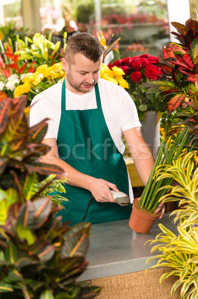 Florist man reading barcode potted plant shop Stock photo © CandyboxPhoto