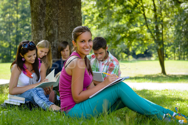 Students studying on meadow in park teens Stock photo © CandyboxPhoto