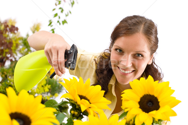 Gardening - woman sprinkling water on sunflower  Stock photo © CandyboxPhoto