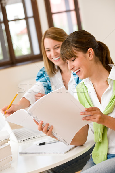Student at home - two happy woman with laptop Stock photo © CandyboxPhoto
